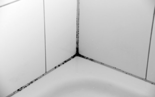 Правильно выбираем тип плитки для ванной!